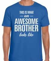 Awesome brother tekst t-shirt blauw heren