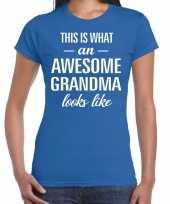 Awesome grandma oma cadeau t-shirt blauw dames