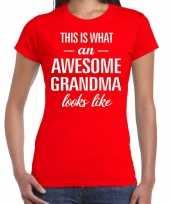 Awesome grandma oma cadeau t-shirt rood dames