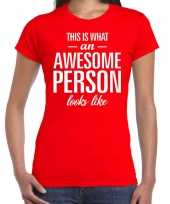 Awesome person persoon cadeau t-shirt rood dames