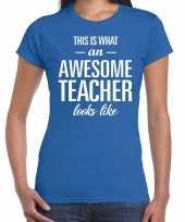 Awesome teacher cadeau juffendag t-shirt blauw dames