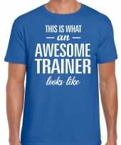 Awesome trainer cadeau t-shirt blauw heren