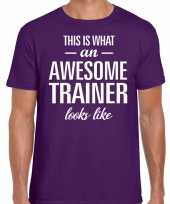 Awesome trainer cadeau t-shirt paars heren