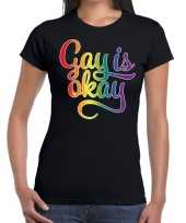 Gay is okay gay pride t-shirt zwart dames