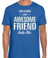 Kado bedankt-shirt awesome friend heren 10199917