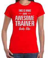 Kado bedankt-shirt awesome trainer dames 10200256