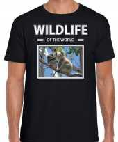 Koala t-shirt dieren foto wildlife of the world zwart heren 10264299