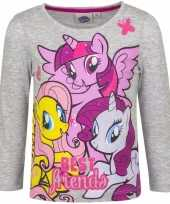 Lange mouwen shirt grijs my little pony
