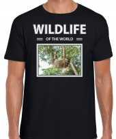 Luiaard t-shirt dieren foto wildlife of the world zwart heren