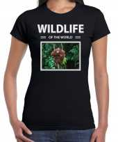Orang oetan aap t-shirt dieren foto wildlife of the world zwart dames