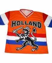 Oranje t-shirt hollandse leeuw hollandse vlag 10047888